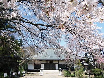 浄光寺 (4)
