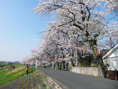 市ノ川 (3)