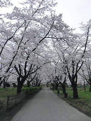 会津若松城(二の丸)