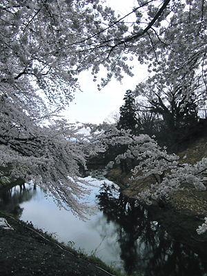 会津若松城 (7)