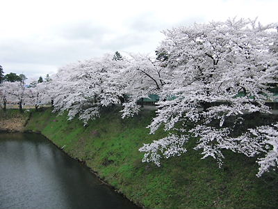 会津若松城 (10)
