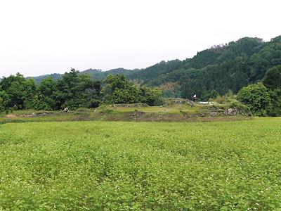 江尾城本丸