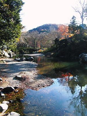 嵐山渓谷 (5)