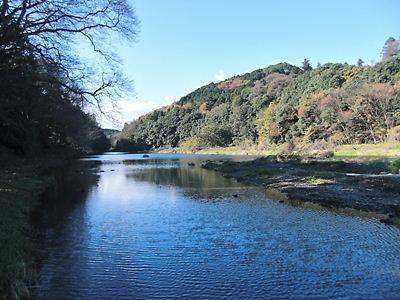 嵐山渓谷 (2)