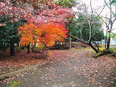 箭弓神社 (3)