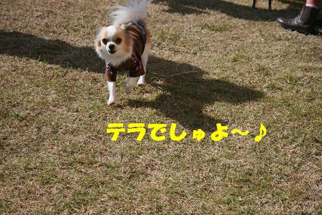 20081122_2.jpg