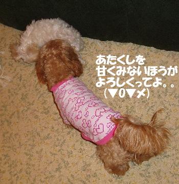 モコ&みゆ