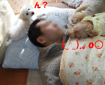 3ショット1