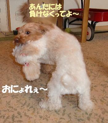 モコ&みゆ4