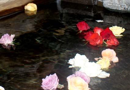 2009-05-15izu-2-24