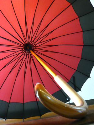 polysciasポリシャス名古屋大須の花屋さんの和傘