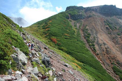 上富良野岳への道