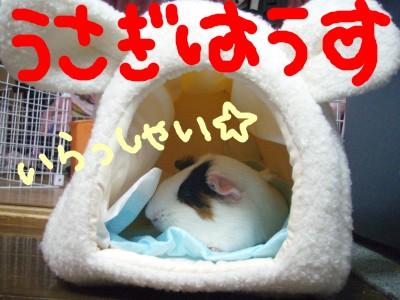 mokousahausu001.jpg