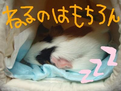 mokousahausu003.jpg