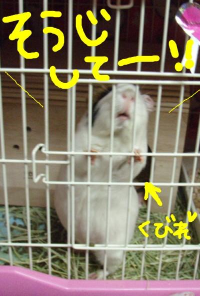 souji003.jpg