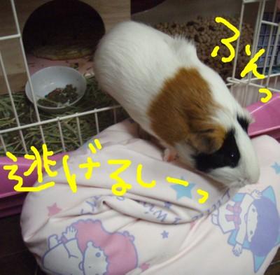 souji006.jpg