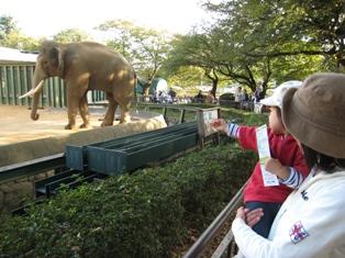 1101動物園2