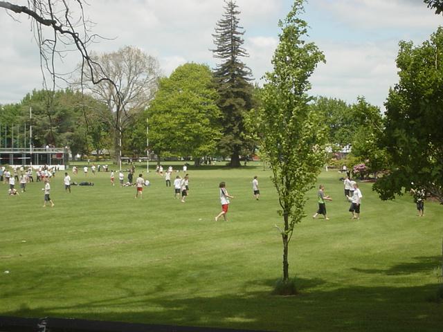 ニュージーランドの校庭風景