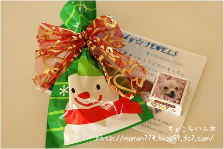 Ladyちゃんからクリスマスプレゼント
