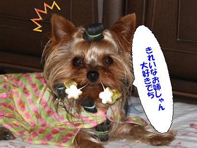 IMG_0185 たぁくん コピー1