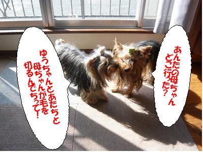 P1070714 コピー1