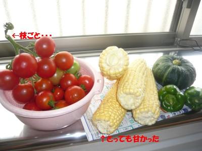 007 野菜