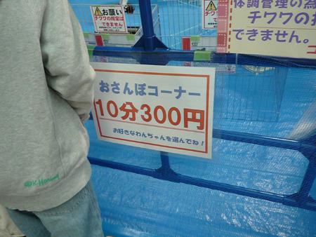 P1000862.jpg