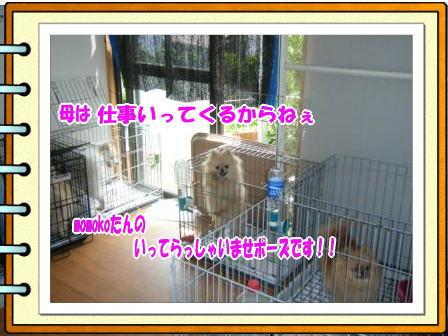 DSCF1329.jpg