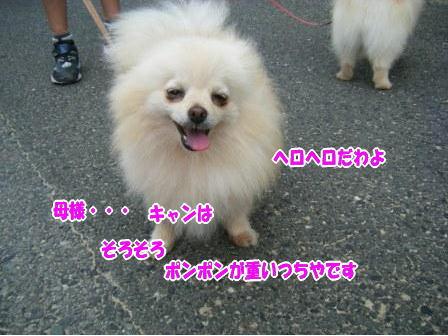 DSCF1339.jpg