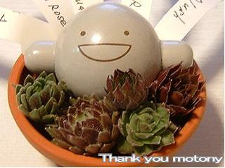 thankyou_motony.jpg