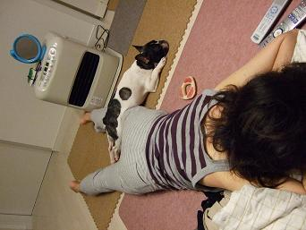 2008_0505はなhana1kh1234こはる40041g
