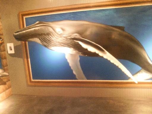 浮き出た鯨