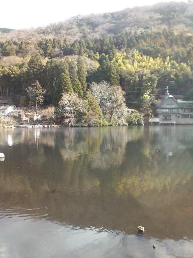 金鱗湖・・・1