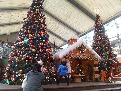 マリノアシティーのクリスマス09①