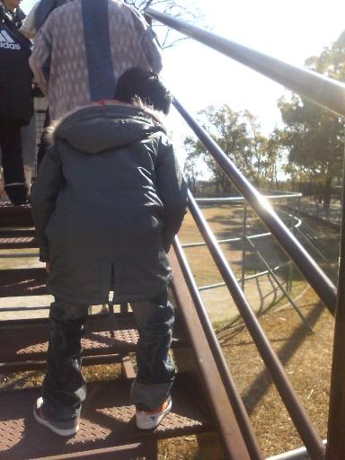 キリンへの階段