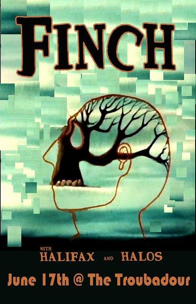 finch617.jpg