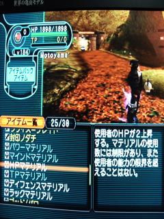 DSCF0025_convert_20081214175319.jpg