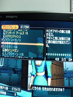 DSCF0032_convert_20081214180153.jpg