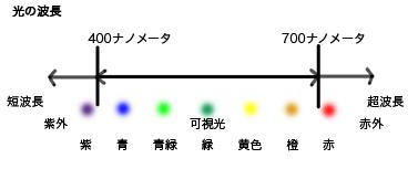 20061113084344.jpg