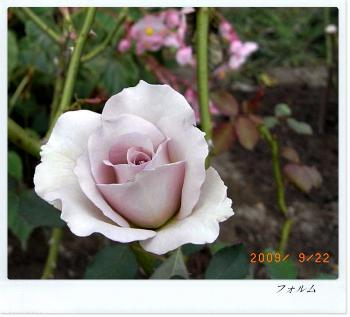 R0012014.jpg