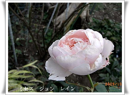 R0012151.jpg