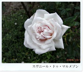 R0012227.jpg