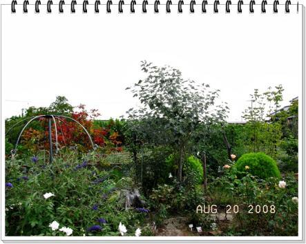 RIMG0261.jpg