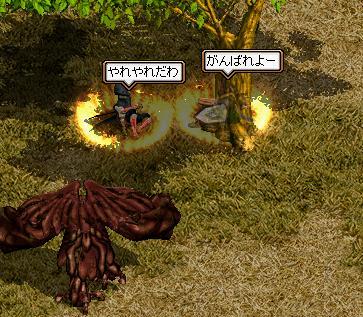 20060625105119.jpg