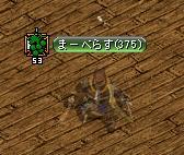 20070522085053.jpg