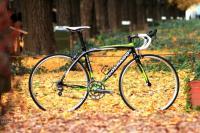 vol7_bike_lg.jpg