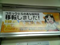 美虎ちゃん@地下鉄