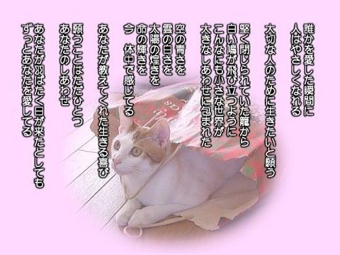 535256913_2061.jpg