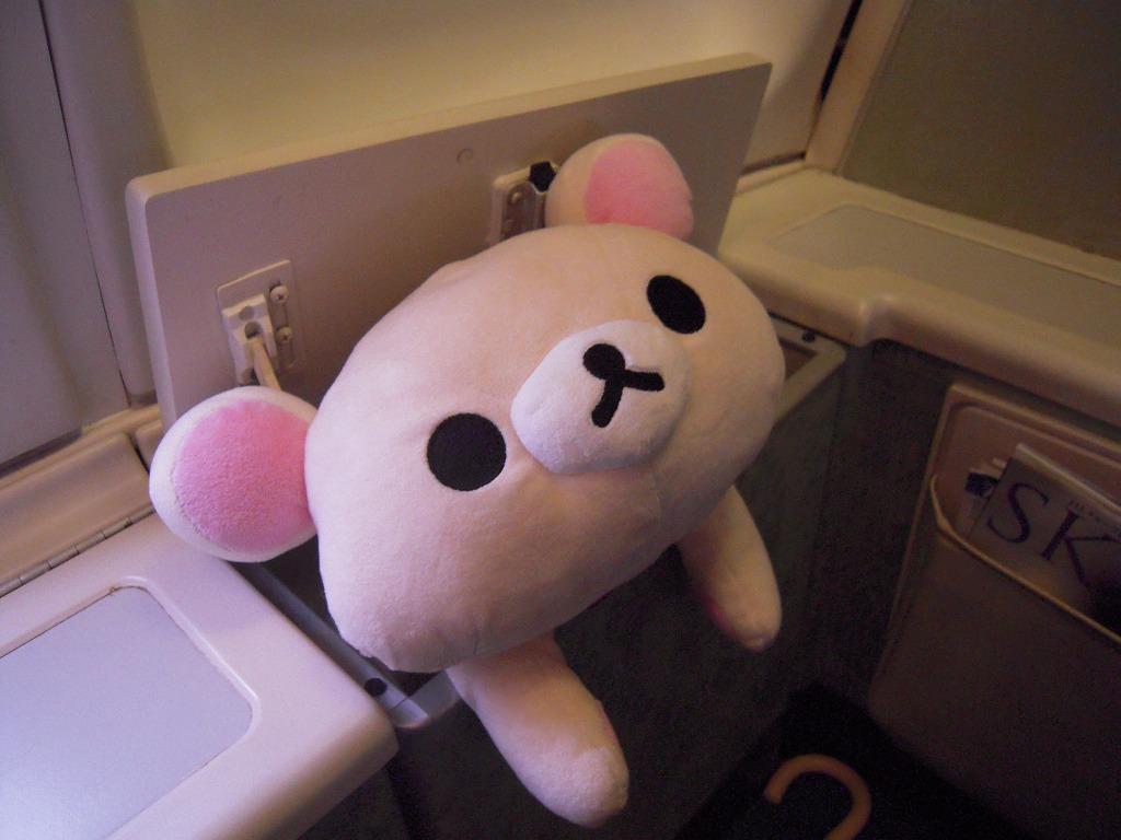 飛行機の中でスキマを見つけたこりらん