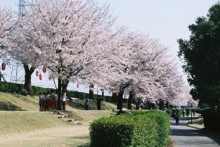 常願寺公園1